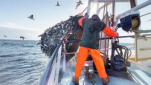 Англия выйдет изконвенции порыболовству после Brexit