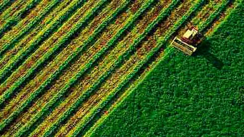 Ринок землі уже запустили. Портрет української моделі