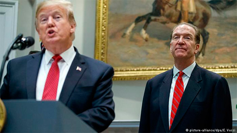 Трамп представил кандидатуру напост руководителя Всемирного банка