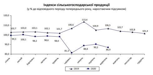 Украина потеряла 13% производства сельхозпродукции