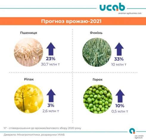Украине прогнозируют в этом году рекордный урожай пшеницы